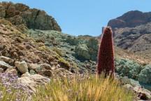 Lavos išlydytos metalų priemaišos suteikia smaragdo atspalvį kalnams